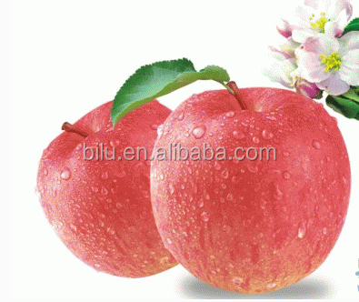 new zealand sweet apple fruit
