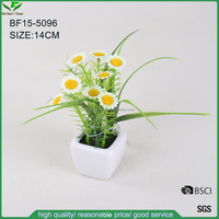 mini desk bonsai, factory direct artificial plastic flowers,artificial daisy Bellis perennis flower