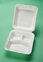 disposable paper pulp/sugarcane pulp take away food container