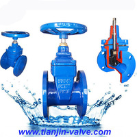 gate valve with pneumatic actuators and manual