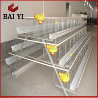 Design poultry layer chicken farming