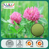 low price Trifolium Pratense L. pure red clover extract powder