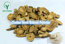 High quality costus root extract/costus root/costus root powder