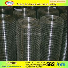 "1/4"" 3/8"" 1/2"" welded wire mesh/galvanized welded mesh"