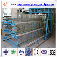 2016 hot sales professional egg chicken farming supplies in china