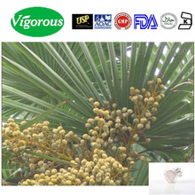 Free Sample Saw Palmetto Berry Extract Powder/Saw Palmetto Berry Extract 25%Total Fatty Acids