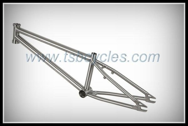Old school bmx bike frame dirt jump bike frame titanium bmx frame TSB- BM1101