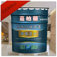 Caboli zinc rich epoxy primer hot sale/high quality/free sample