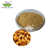 100% Natural Purity Peach Kernel Extract Powder / Peach Seed Extract Amygdalin
