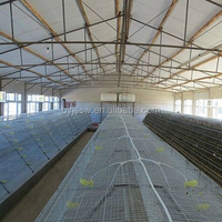 Quail Cage Design, High Quality Quail Breeding Cage Suppliers Price,Metal Quail Cage