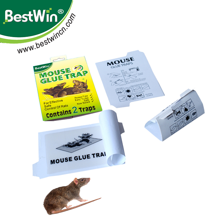 BSTW BV certification strong viscous mouse glue board