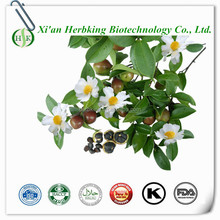 Camellia seed extract powder/Tea saponin 95%