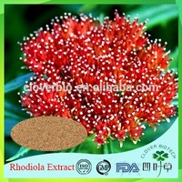 dry kudzu extract with 99% puerarin in health made in China