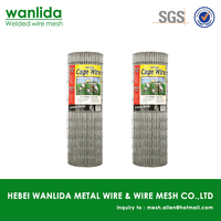 16 Gauge galvanized bird cage welded wire mesh roll ( SGS )