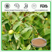 Natural Wild Jujube Seed Extract Powder,Total Saponins 2%