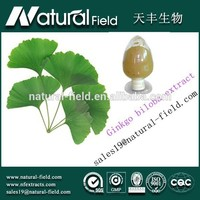 Large-scale plant base Best Supplier you can trust 24% ginkgo biloba extract
