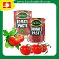 Canned tomato paste,tomato sauce,ketchup with easy open hard open lid