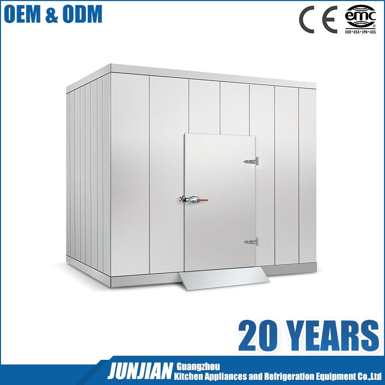 Deep frozen cold room / powered refrigerated containers / cold room