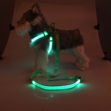 quanlity OEM pet product led dog harness