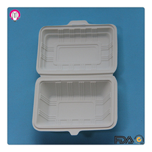 Eco Friendly Picnic Disposable Cornstarch Food Container Biodegradable Lunch Box