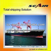 sea freight from china/ china freight forwarder to USA/ worldwide