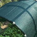 Shade Sails & Enclosure Nets Type sun shade netting/agriculture net/green shade net