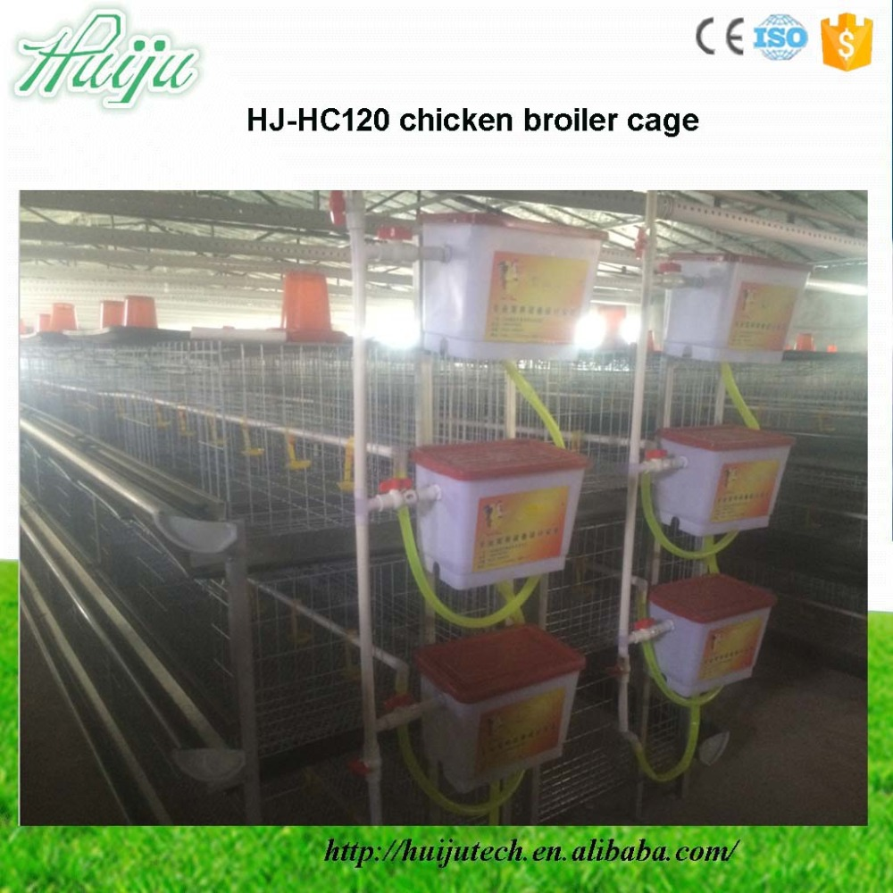 Automatic High quality Chicken Broiler Cage For Broiler Rearing Cage System HJ-HC120
