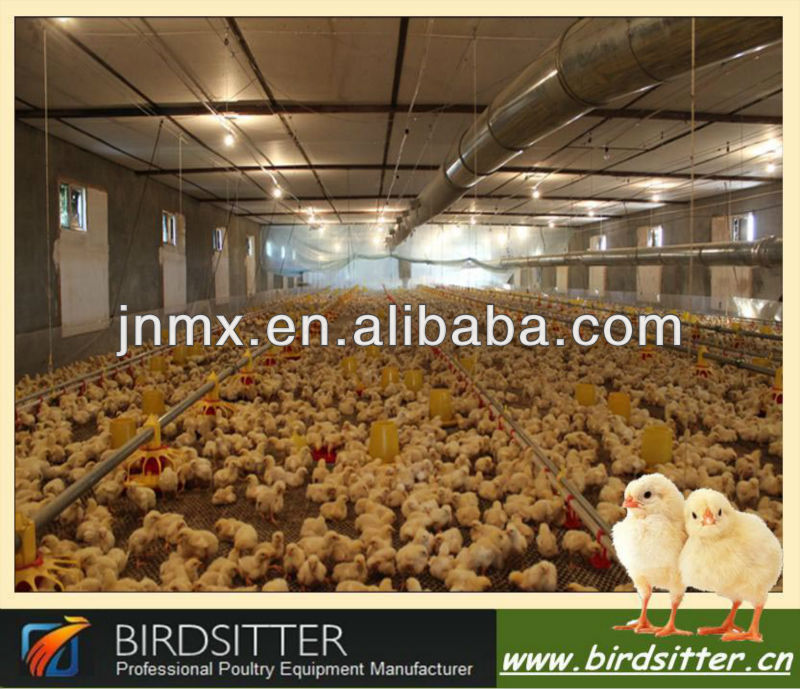 strong poultry farm organizational structure