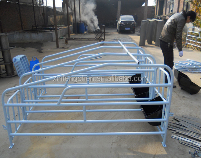 hot dipped galvanized pig pen for sale