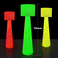 Modern rechargeable battery operated LED floor lamp