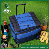 Outdoor Picnic Insulated Cooler Bag Professional