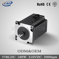 China top 10 125W 220v large brushless dc motor 40000rpm
