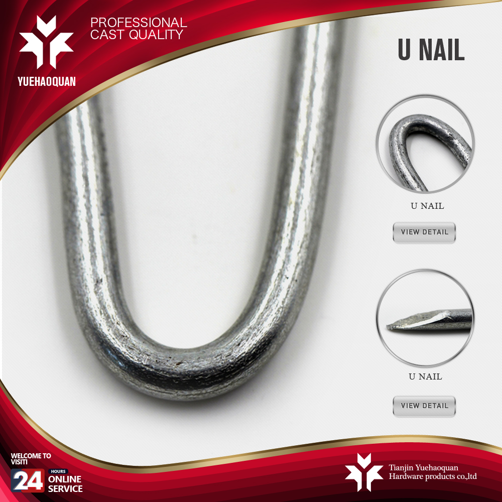 u-type nails fasteners u fence staple/u shaped nail