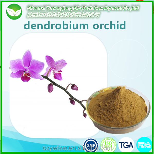 Best Dendrobine From shi hu dendrobium nobile stem extract powder