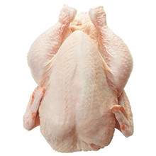 WHOLE FROZEN CHICKEN AND CHICKEN PARTS FROM BRAZIL