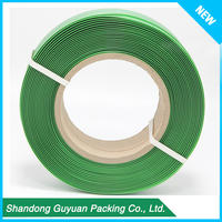 Green Polyester Pet Webbing Strap Recycle Pet Strap