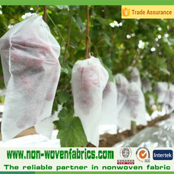 PP Non woven Fabric Fruit Plant Cover For Banana/Grape Factory in China