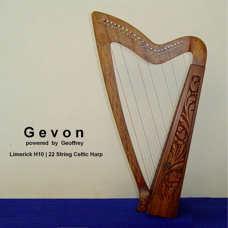 Gevon Rosewood Irish Celtic Harp | 22 strings | Limerick H10