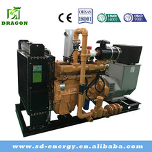 50 kw Small Biogas Generator Price or Gas Engine Generators Prices