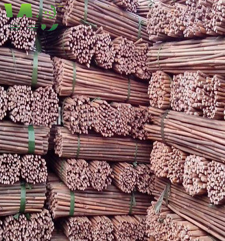 WY-CC076 2016 high quality gardening bamboo poles/canes/stakes/sticks price best for sale