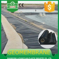 competitive price hdpe membrane,waterproof geomembrane, hot sale pond liners