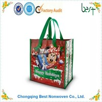 Colorful Printing Nonwoven Bag/PP Laminated Non woven promotional bag