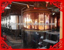 shunlong beer equipment company 500l small beer factory the best chose of business plan and invest