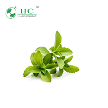 GMP & ISO Manufacturer Natural Organic Stevia Sugar Price