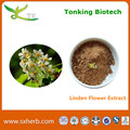 high quality supply dried linden flower extract