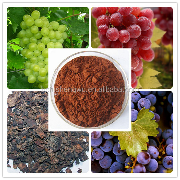 opc+grape+seed+extract/grape seed extract 95%/fresh seeded grapes