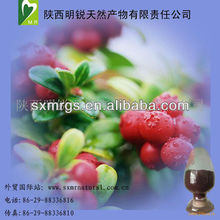 Fresh Nature Fruit Bilberry Extract