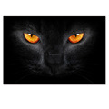 Custom Stretched Canvas Black Cat Picture Printed on Canvas Modern Home Wall Decor Animal Photo Canvas Printing