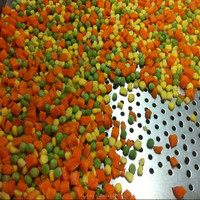 freshly iqf frozen chilled steamed mix mixed vegetable factory price