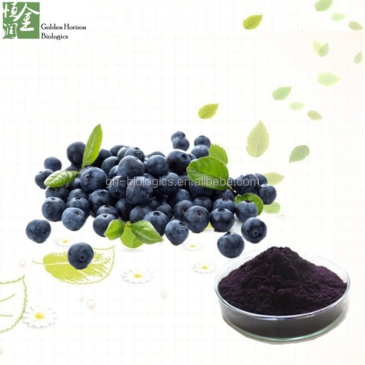 Antioxidant Anthocyanidin Blueberry/Bilberry Extract